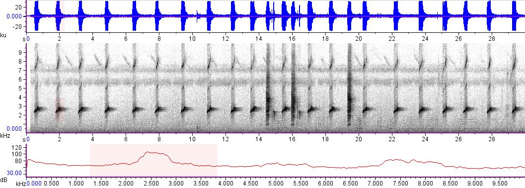 Sonogram of recording #AV 15063