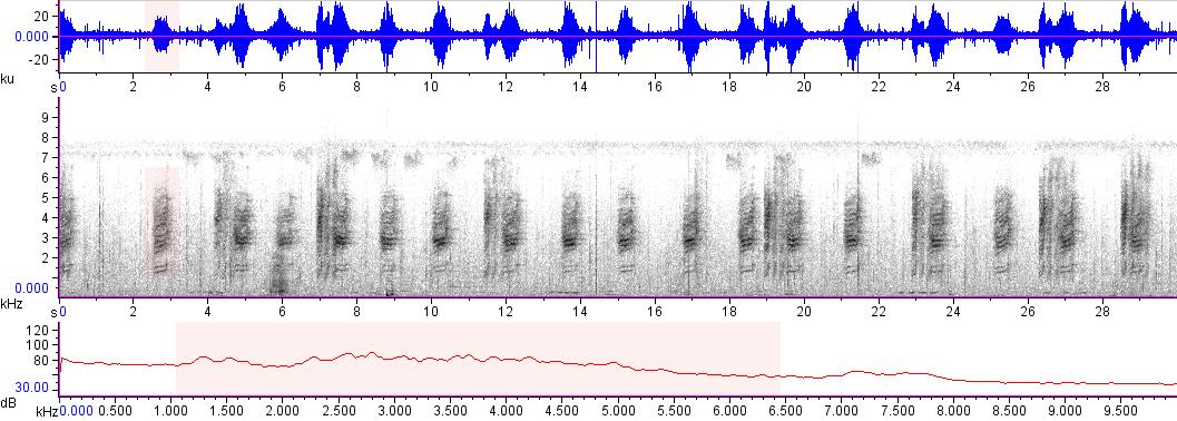 Sonogram of recording #AV 15070