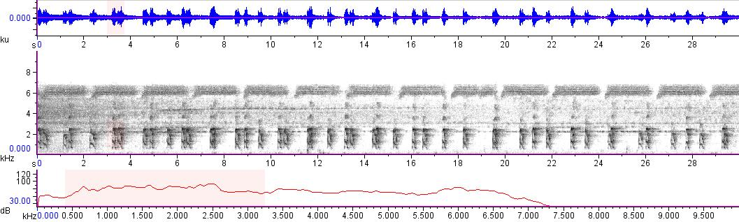 Sonogram of recording #AV 15094