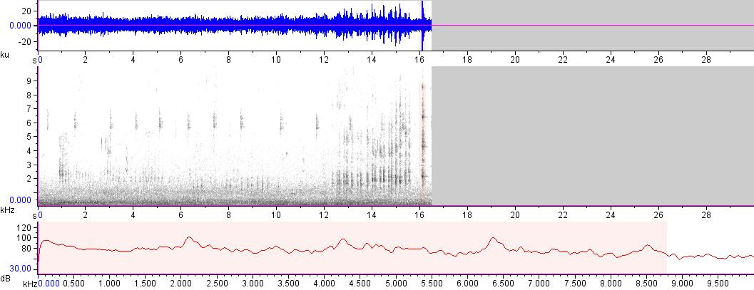 Sonogram of recording #AV 15121