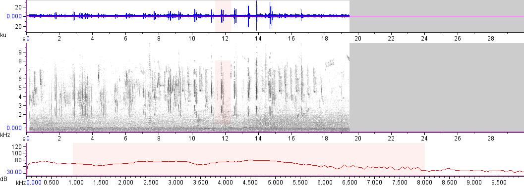 Sonogram of recording #AV 15148