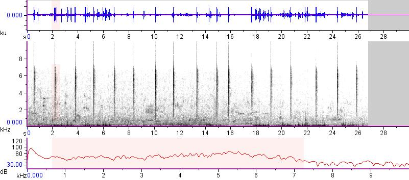 Sonogram of recording #AV 15153