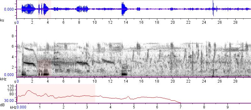 Sonogram of recording #AV 15184