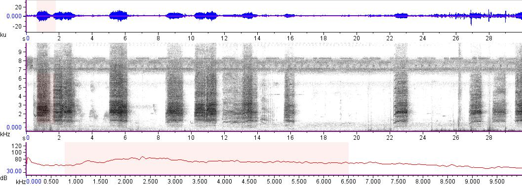 Sonogram of recording #AV 15188