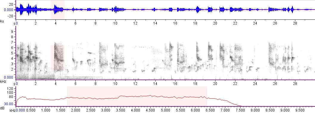 Sonogram of recording #AV 15201