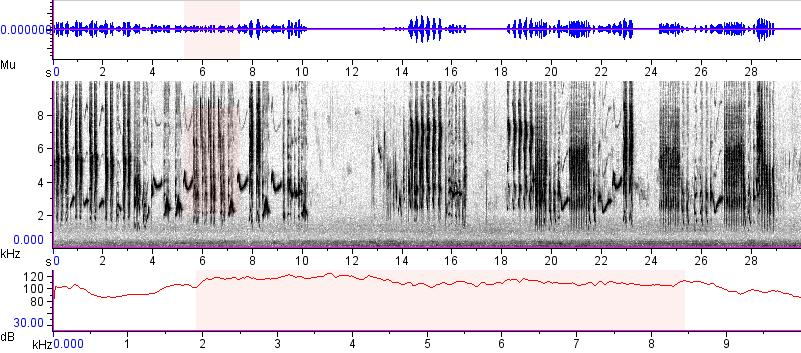 Sonogram of recording #AV 15297