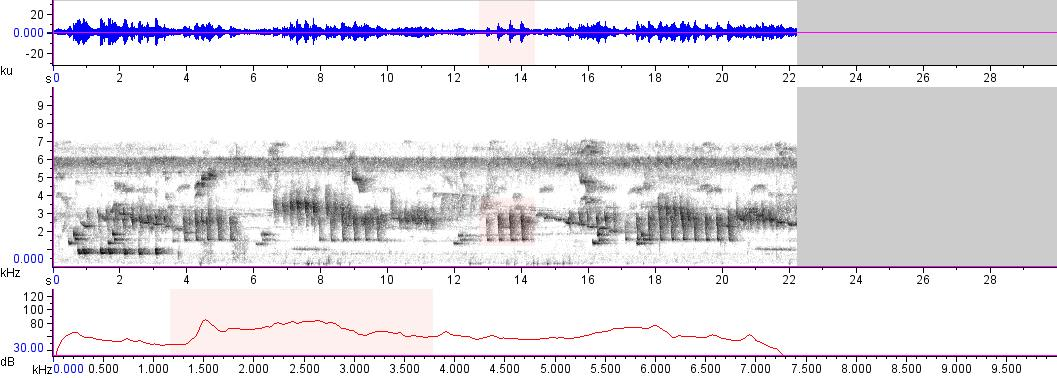Sonogram of recording #AV 15314