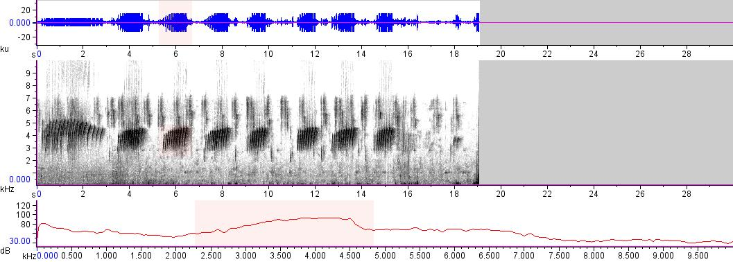 Sonogram of recording #AV 15372