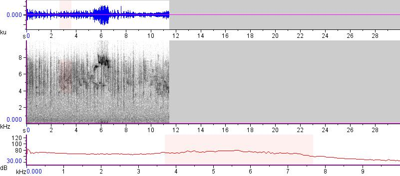 Sonogram of recording #AV 15435