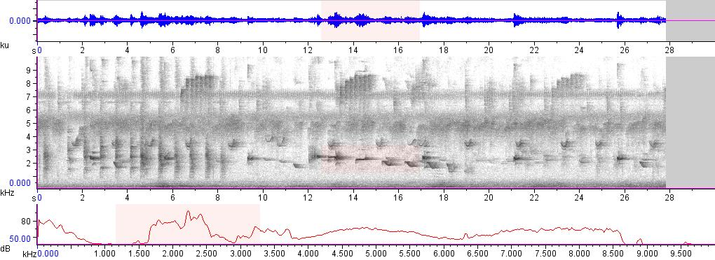 Sonogram of recording #AV 15747