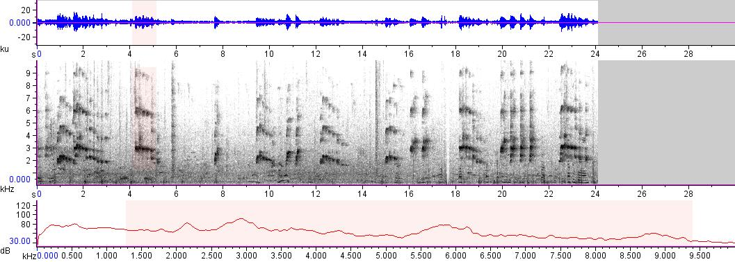 Sonogram of recording #AV 16573