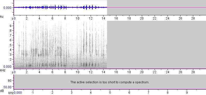 Sonogram of recording #AV 16652