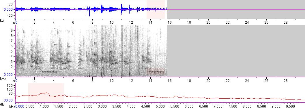 Sonogram of recording #AV 16872