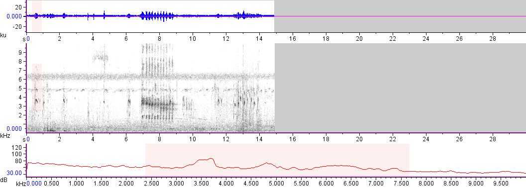 Sonogram of recording #AV 16894