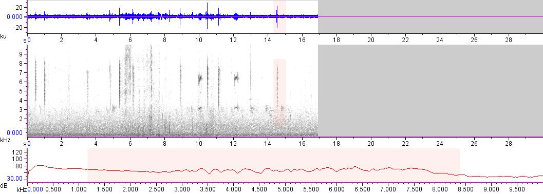Sonogram of recording #AV 16932