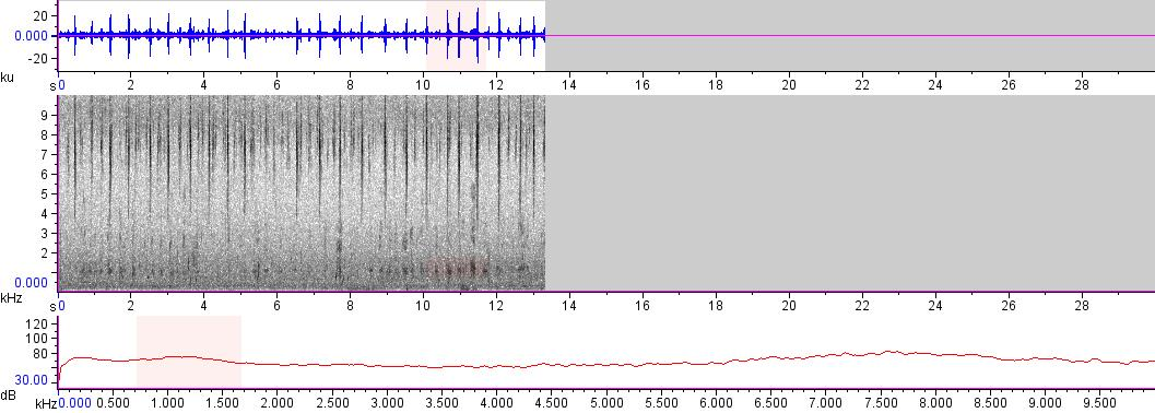 Sonogram of recording #AV 17194