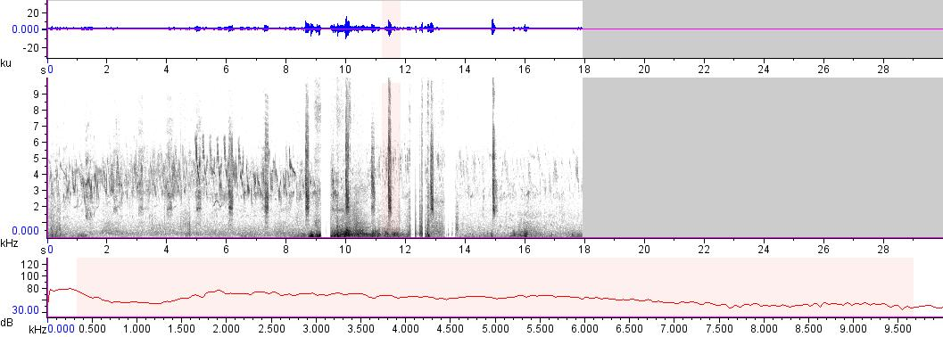 Sonogram of recording #AV 17267
