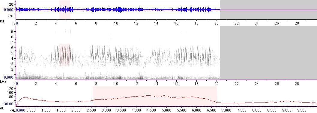 Sonogram of recording #AV 17268