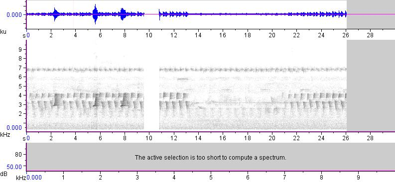 Sonogram of recording #AV 17327