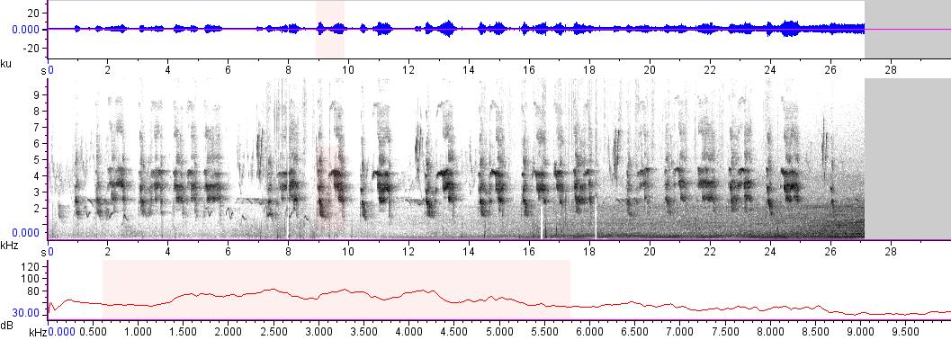 Sonogram of recording #AV 17357