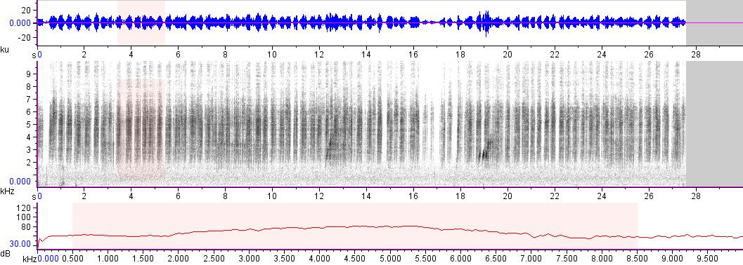 Sonogram of recording #AV 17522
