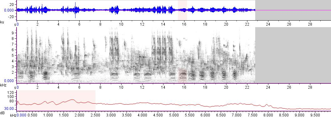 Sonogram of recording #AV 17592