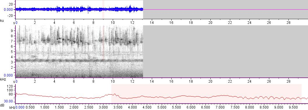 Sonogram of recording #AV 18371