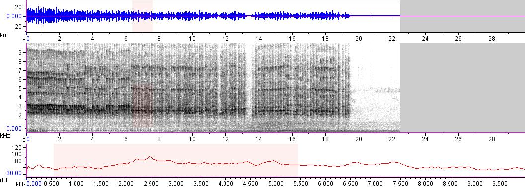 Sonogram of recording #AV 18680