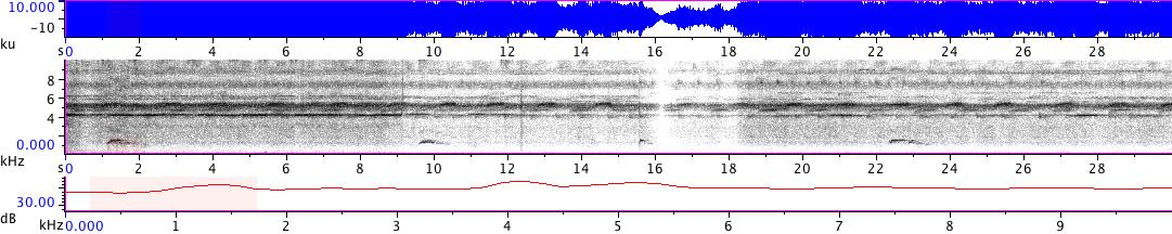 Sonogram of recording #AV 18765
