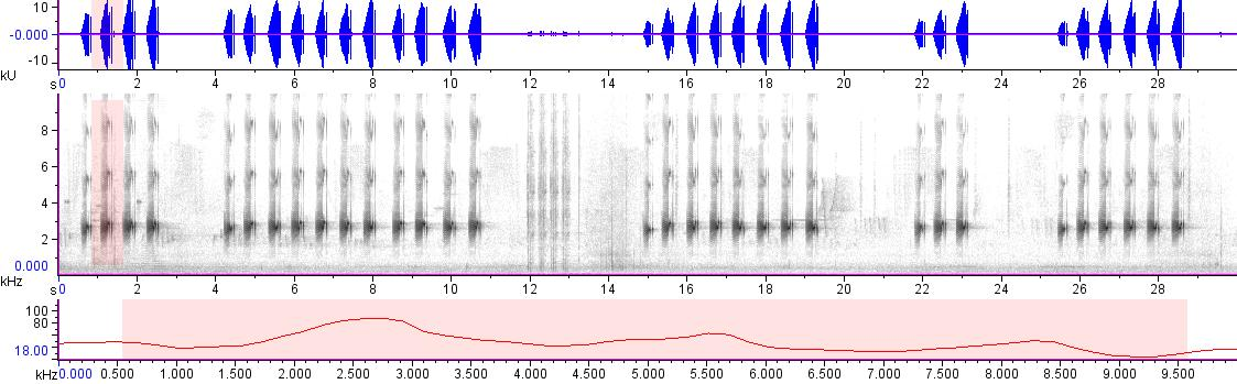 Sonogram of recording #AV 18791