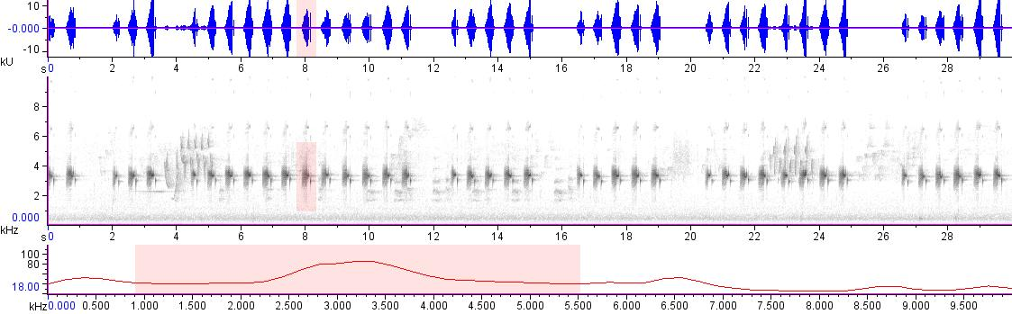 Sonogram of recording #AV 18792