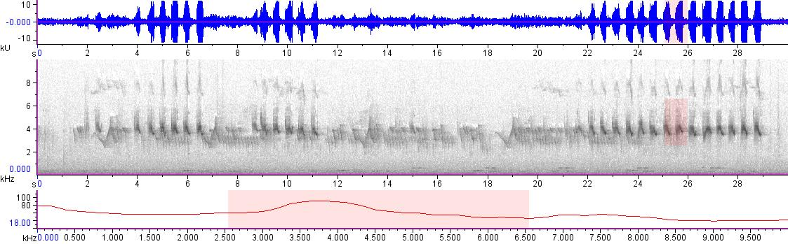 Sonogram of recording #AV 18830