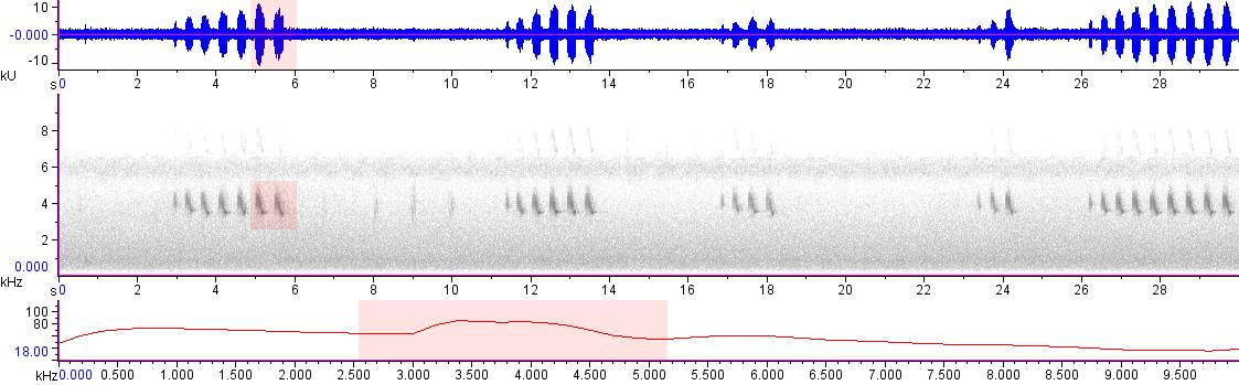 Sonogram of recording #AV 18837