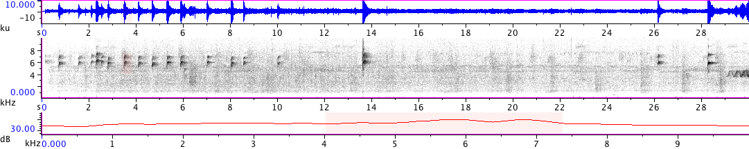 Sonogram of recording #AV 18842