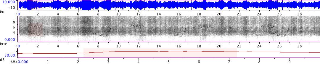 Sonogram of recording #AV 18864