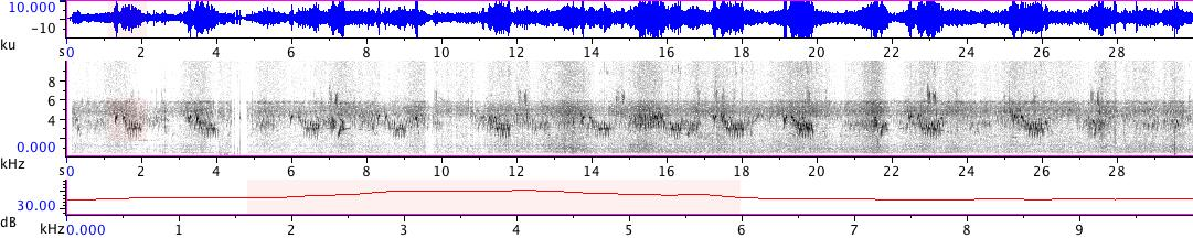 Sonogram of recording #AV 18867