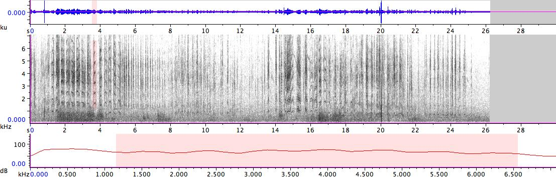 Sonogram of recording #AV 19037