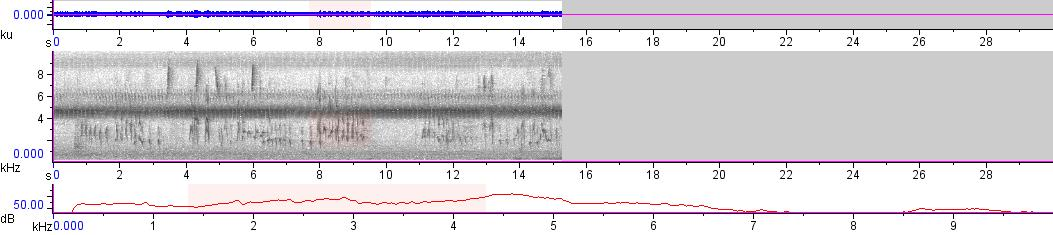 Sonogram of recording #AV 19738
