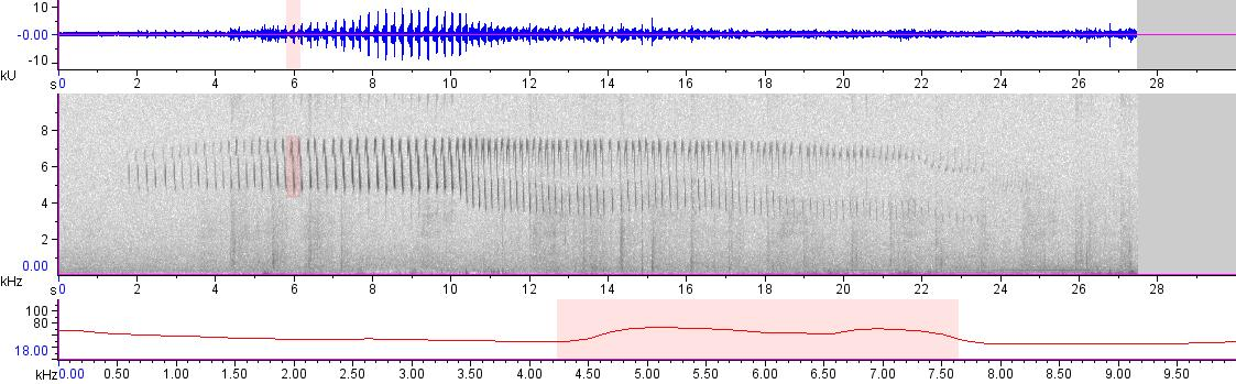 Sonogram of recording #AV 19928