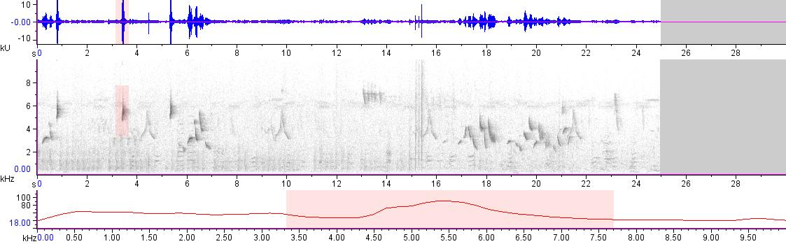 Sonogram of recording #AV 20042